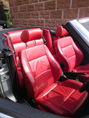 Red leather 1.jpg